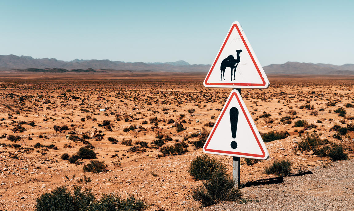 Sign in desert of camel