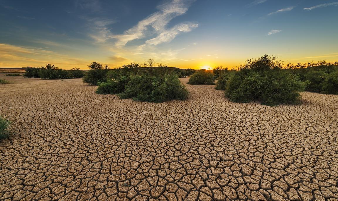 Dry ground Sahel