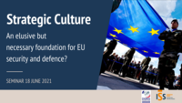 Soldiers carrying EU flag © EUuropean Union 2014 - European Parliament