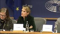 Florence Gaub speaking at the European Parliament